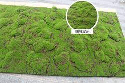 Simulated green wall moss lawn moss lawn simulation moss bonsai lawn green scene cabinet window fake moss