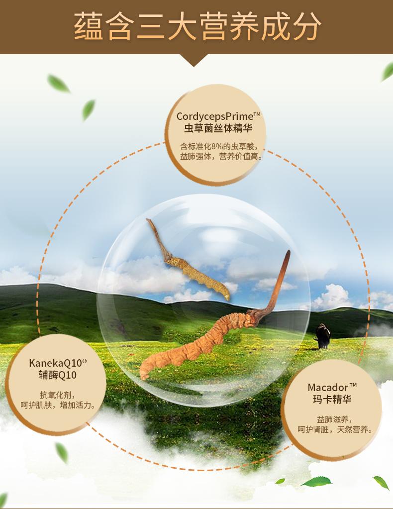 CATALO美国家得路特强虫草菌丝体精华 解疲助眠 强健体质 ¥298.00 产品系列 第7张