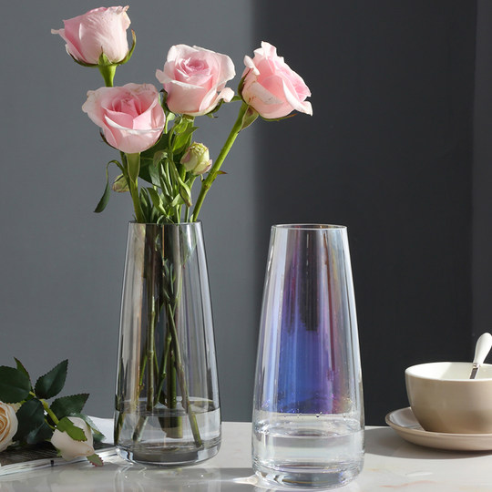 Light luxury glass vase ornaments Modern minimalist living room transparent hydroponic diarrus bottle Nordic table decoration creative