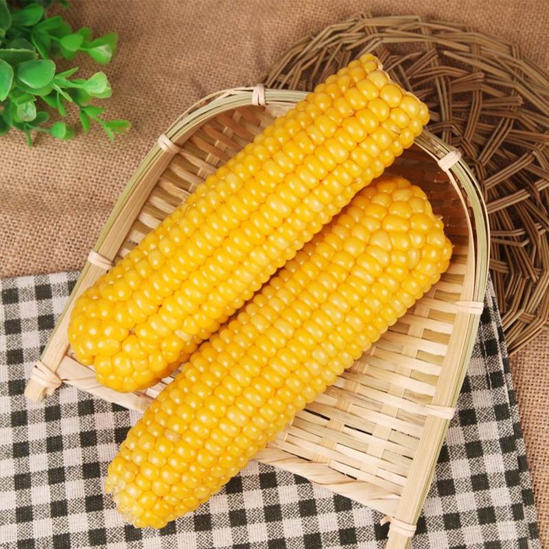 东北有机玉米新鲜甜糯粘玉米棒非转基因