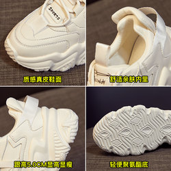 Red dragonfly old shoes women's shoes 2021 new spring all-match spring style hot style small white thick-soled casual sports shoes