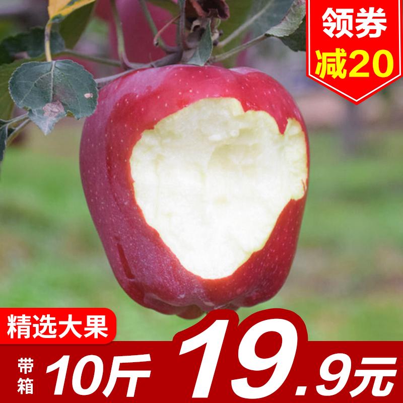 甘肃天水新鲜花牛苹果水果非红富士苹果蛇果孕妇水果整箱10斤包邮