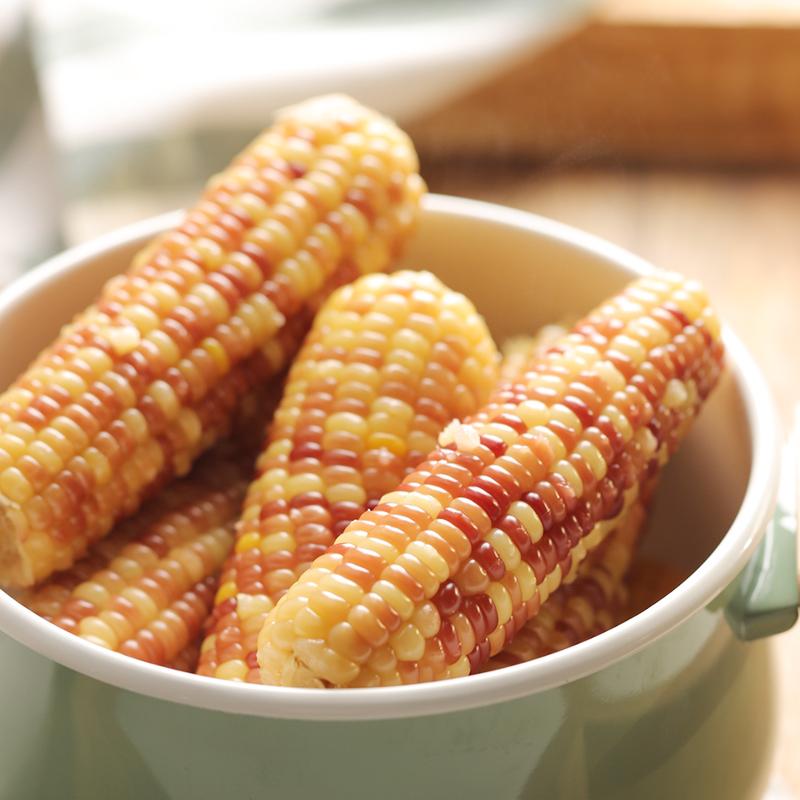 东北甜糯五彩粘玉米8根真空非转基因