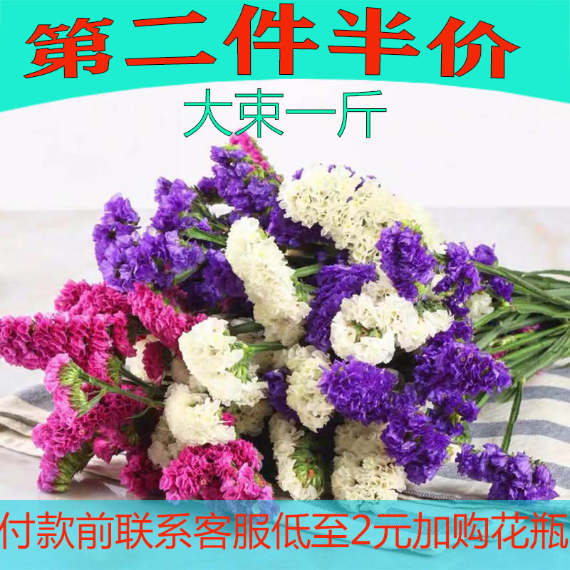 Yunnan Forget Me Not Flowers Half Dried Flowers Real Flowers Gypsophila Air Dried Yunnan Natural Dried Flower Bouquet Diy Material Package