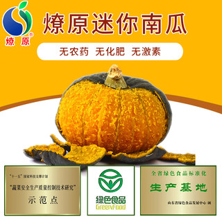 Liaoyuan green mini pumpkin New pumpkin green without pesticide residue baby safe food supplement 5 kg SF
