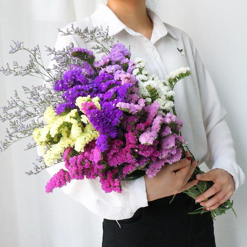 满天星干花花束勿忘我大束鲜花真花情人草向日葵干花家居装饰摆件