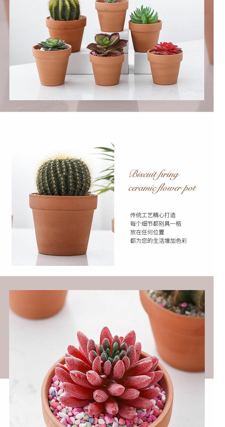 Flushed red pottery fleshy flower pot seedling large thick clay ceramic made of baked clay mud short basin of large diameter special package mail