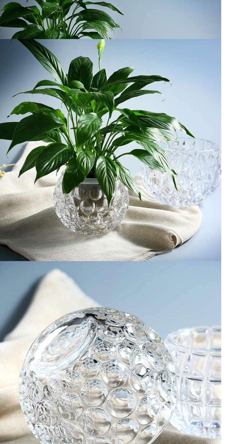 Little more pure and fresh glass vase hydroponic planting green, the plants money plant flower implement transparent sitting room tea table decoration furnishing articles
