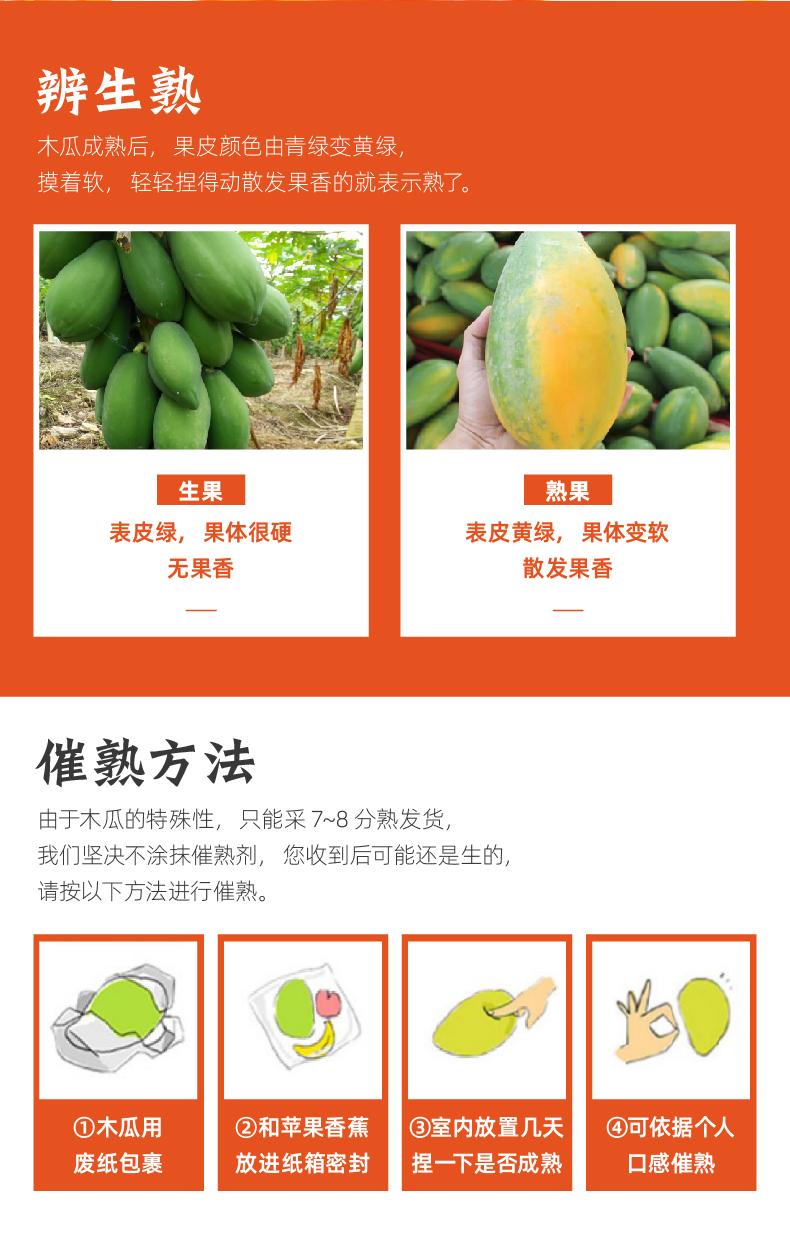 云南红心牛奶木瓜 9斤 图9