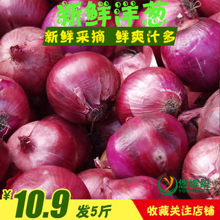 Fresh expensive fresh onion vegetable onion head red onion farmhouse purple skin small onion 5 kg