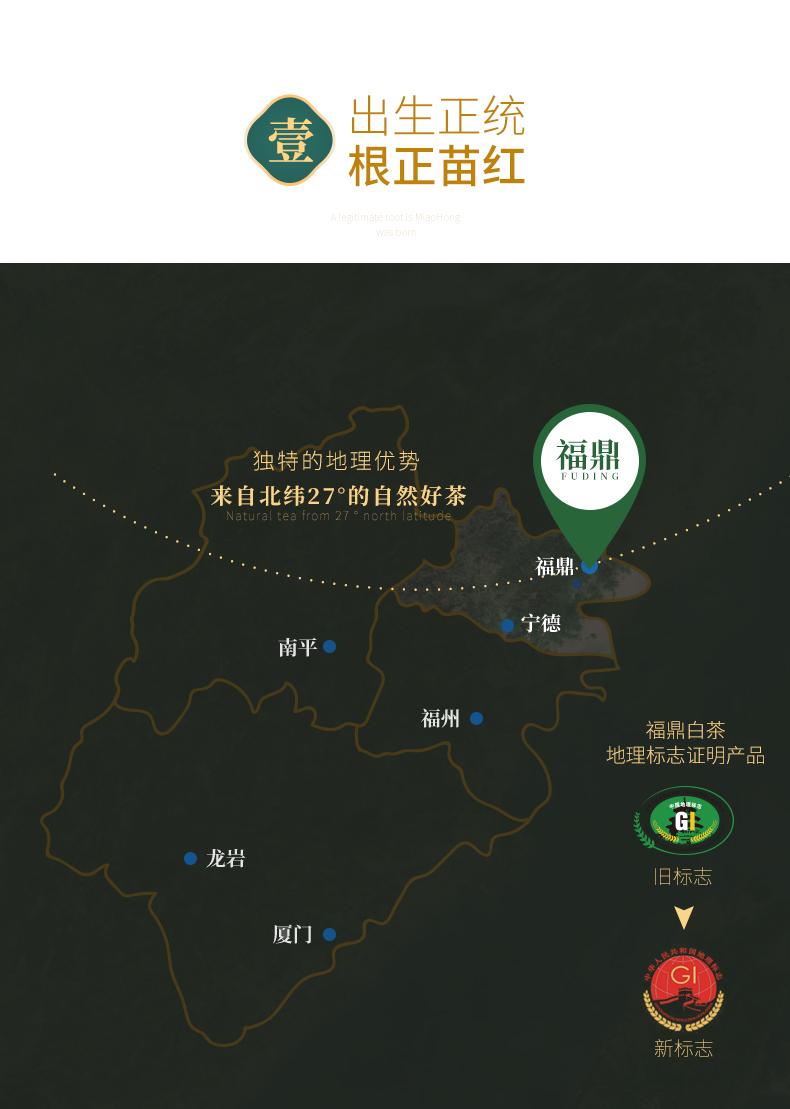 白茶甫 正宗福鼎白茶饼 350g 2019年份寿眉 图5
