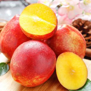 现货拍五件!【砀山】黄心油桃5斤