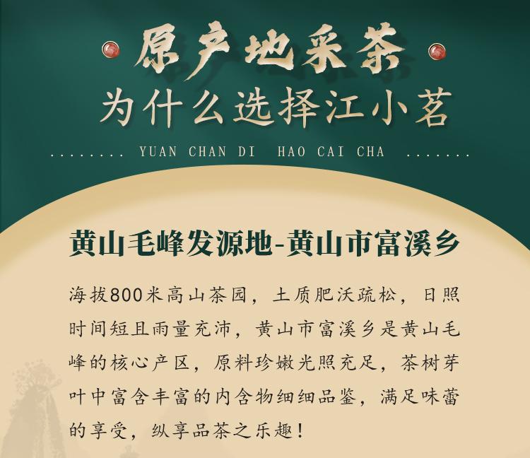 江小茗 21新茶 特级安徽黄山毛峰 250g*2罐 图4