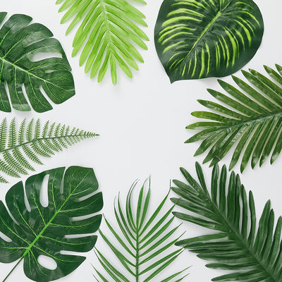 Nordic INS creative simulation leaves tropical plant coco leaves props grid photo wall green decoration
