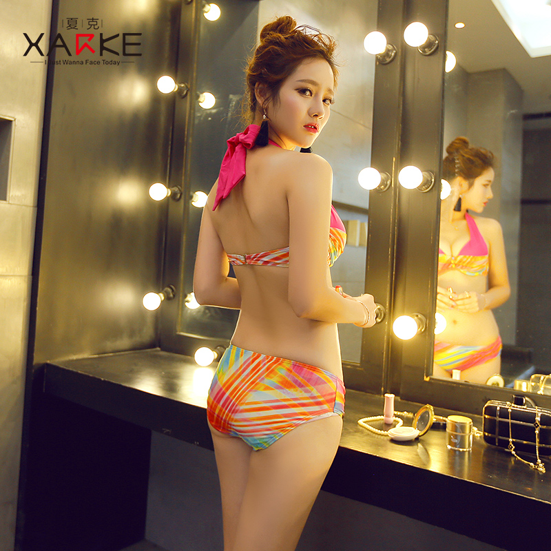 b0a73a5fb8 Bikini swimsuit women's three-piece sexy three-point small chest gathered  Korean hot springs small fragrance big breasts holiday