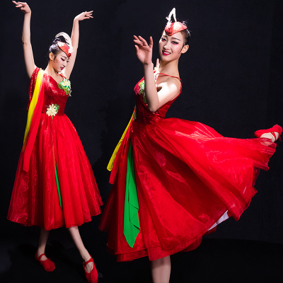 Chinese Folk Dance Costumes Classical Dance Costume Female Song Accompanied Dance Skirt Opening Dance Modern Dance Costume Adults