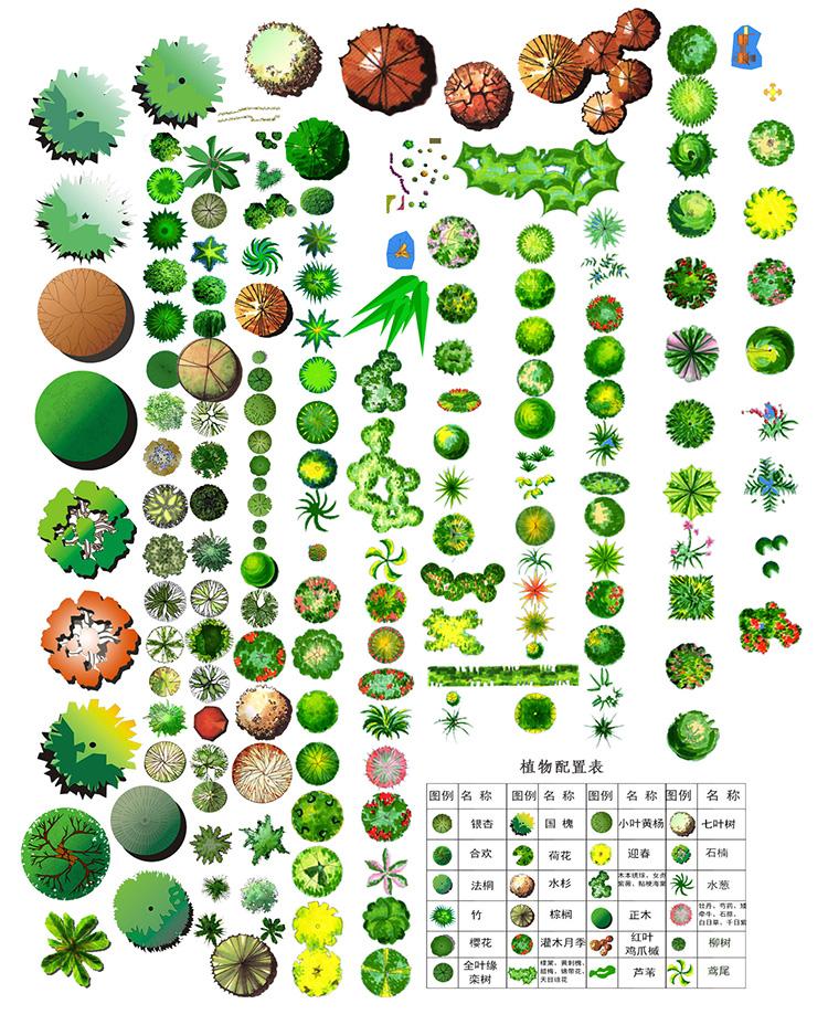 园林景观PS彩色总平面图案笔刷立面填充植物铺装psd分层设计素材插图(14)