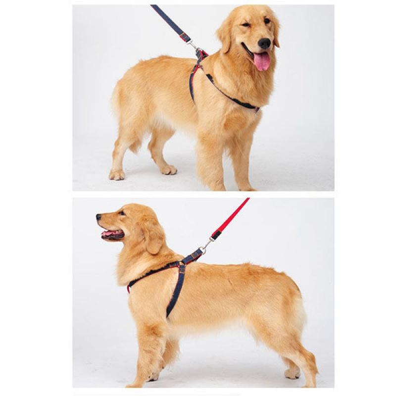 中型大型犬背心式成犬狗链狗绳