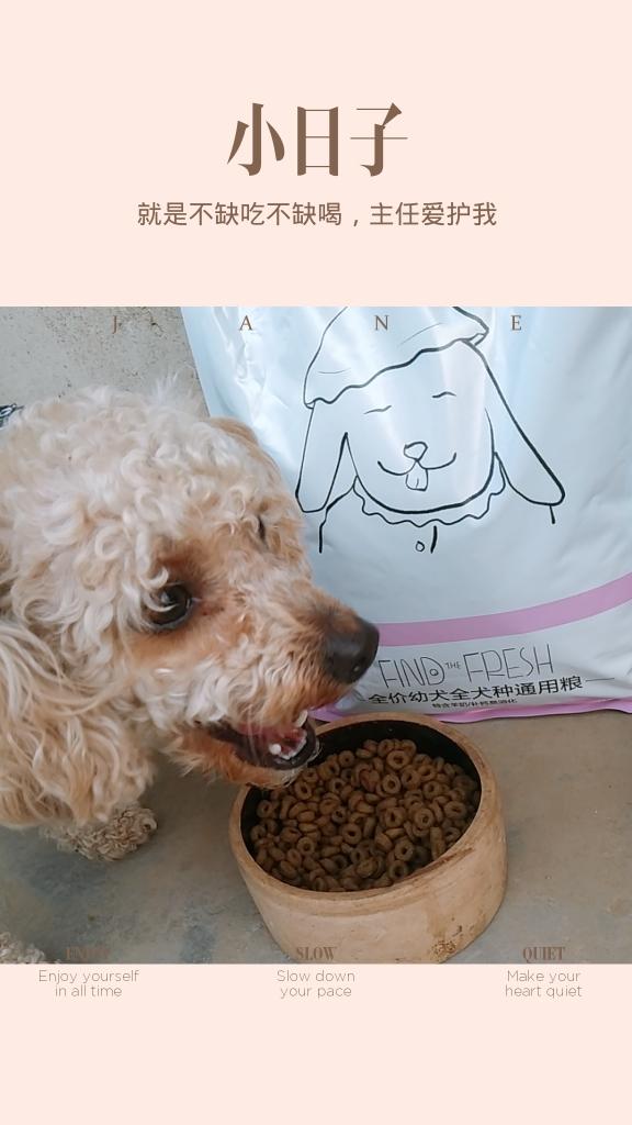 这个牌子的狗粮改善我家贵宾的流泪的状况