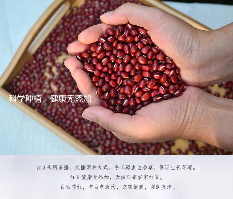 红豆5.jpg