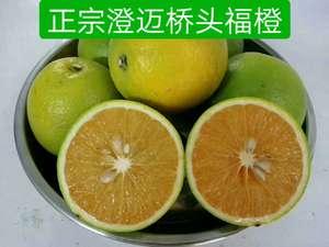 澄迈福橙 – 海南-澄迈特产