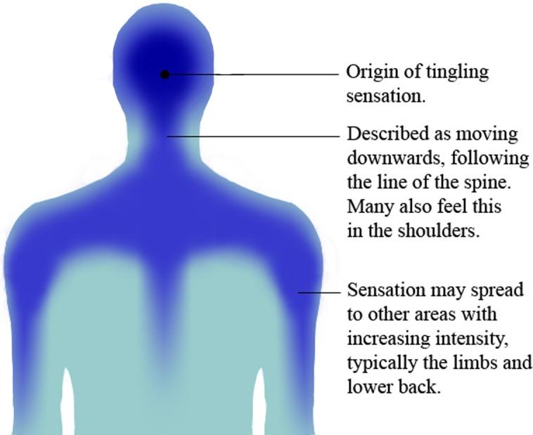 探索一种独特亚文化心理精神消费ASMR自主感觉经络反应