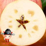 年货  陕西山地冰糖心苹果红富士 5斤 16.9元包邮