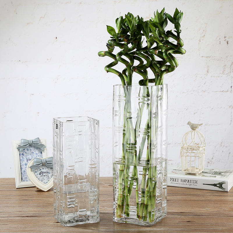 Dibyna Extra Large Vase Thick Glass Water Bamboo Rich Bamboo