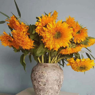 Yunnan Kunming Flowers Express Double Teddy Van Gogh Sunflower Green Heart Sunflower Flower Arrangement Retro Bouquet
