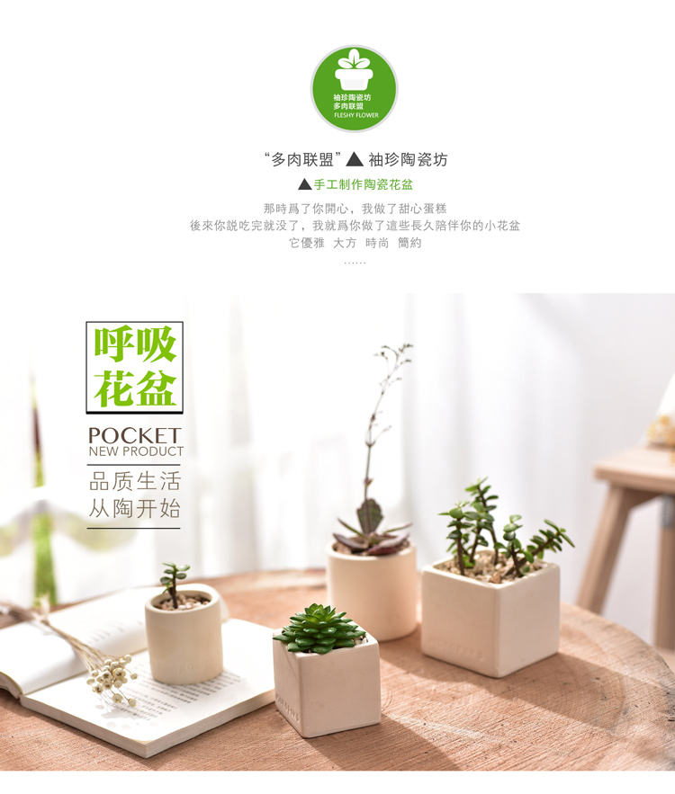 Putih Terracotta Pot Bunga Putih Pot Tanah Liat Bernapas Ubin Pot Hongtao Eropa Tanah Liat Ungu Bonsai Kecil Pot Tanaman Bunga Pot Planters Aliexpress