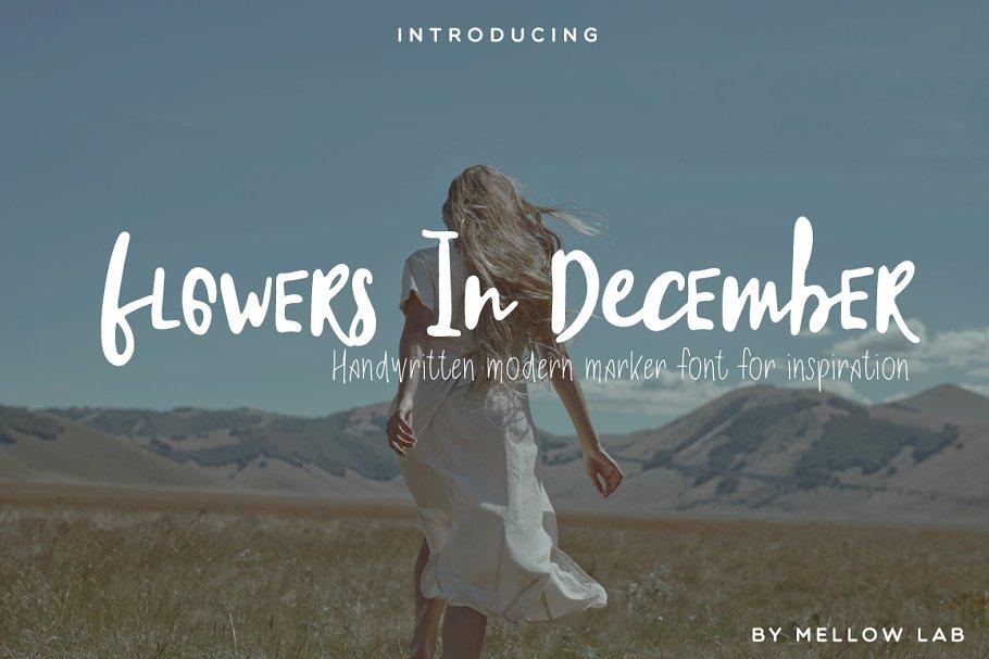 有趣的手写字体 Flowers In December Font Collection设计素材模板