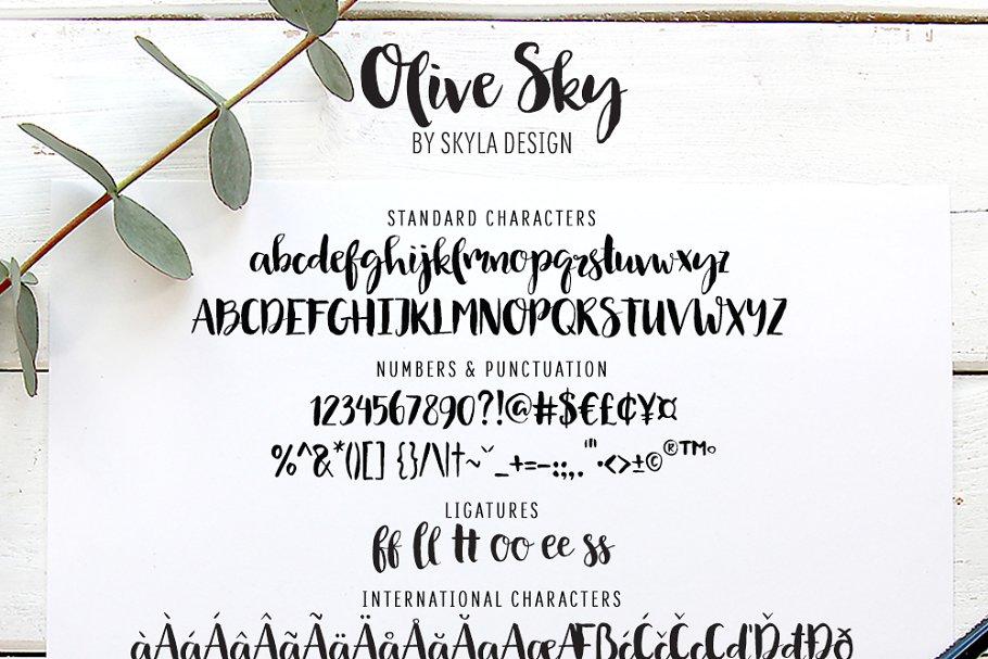 厚重的手写字体 Olive Sky Modern brush font设计素材模板