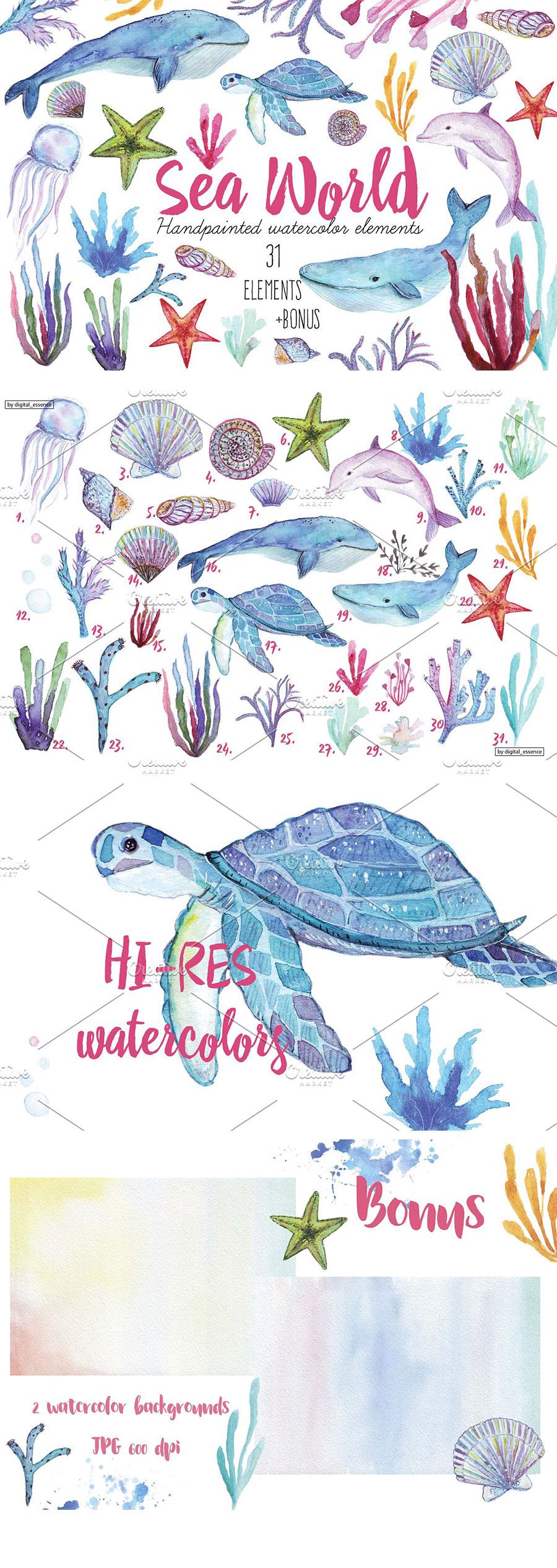 美丽的海洋生物水彩质感元素下载[高清图PNG]设计素材模板