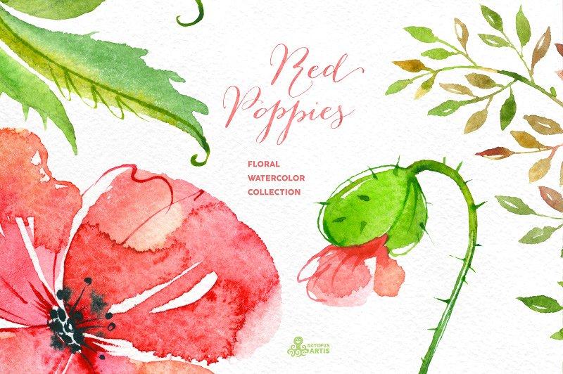 redpoppies-cm-3-.jpg