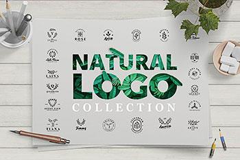 女性用品LOGO模板护肤品化妆品自然植物树叶图形图标时尚店铺标志