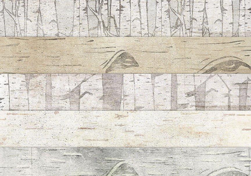 cstep-birch-paper-details2-.jpg