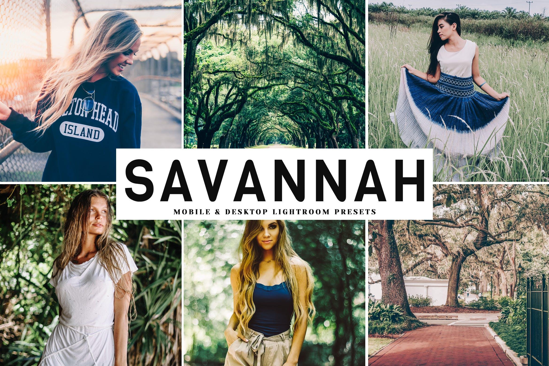 哑光效果绿色调滤镜LR照片调色预设 Savannah Mobile & Desktop Lightroom Presets设计素材模板
