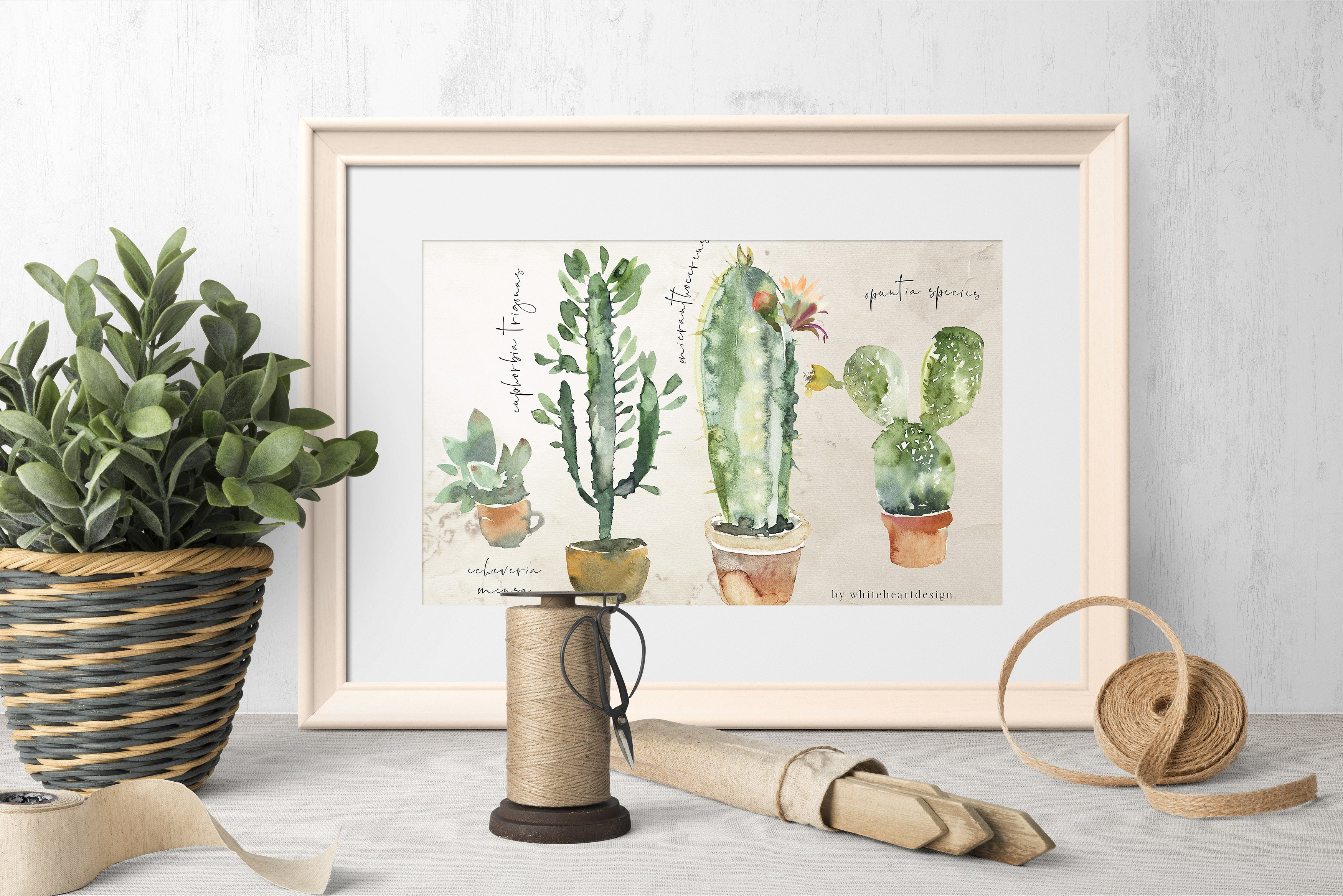 cacti-watercolor-cactuses-collection-.jpg