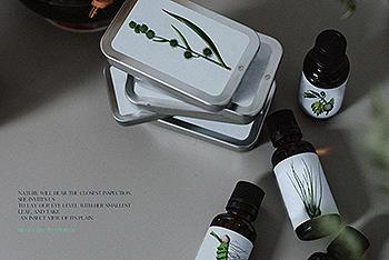 5个优雅复古质感的时尚高端绿色植物元素集合