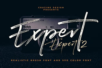时尚高端中国风手写毛笔笔刷风格的SVG字体