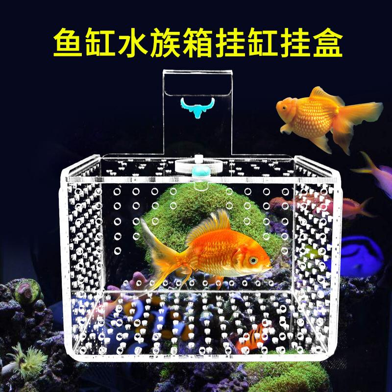 大小保护盒隔离孔雀悬浮式亚克力水族孵化箱小鱼号鱼缸斗鱼苗饲养