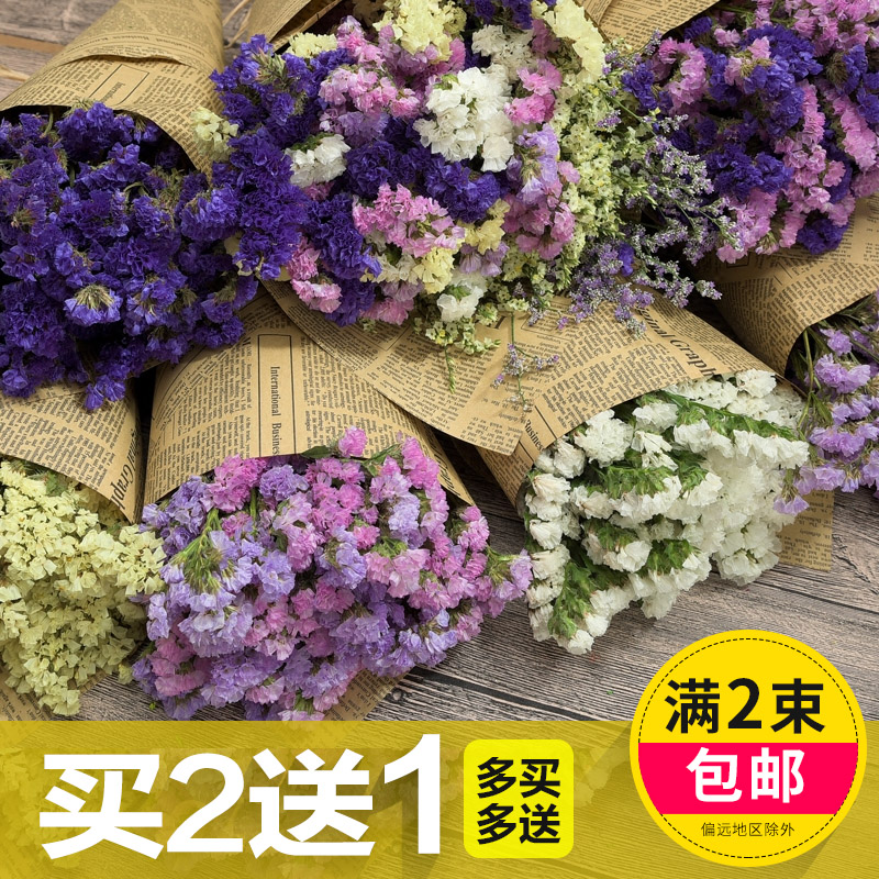 Dried flowers wholesale starry forget me dry flower bouquet diy ...