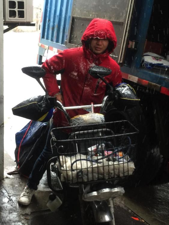 寒冬腊月网购年货大增,快递员冒雪送包裹
