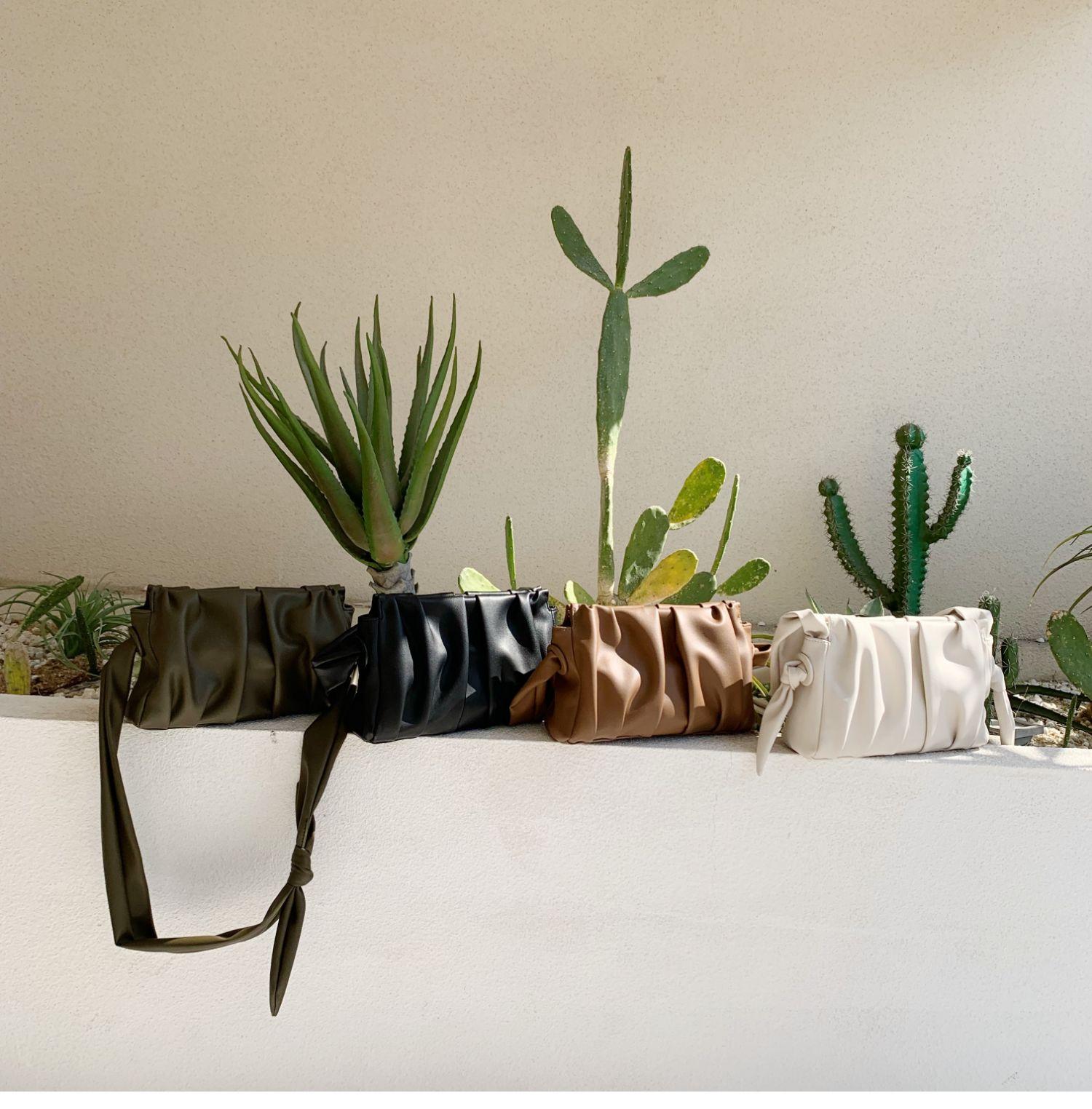 Plant - Sac Ferjina