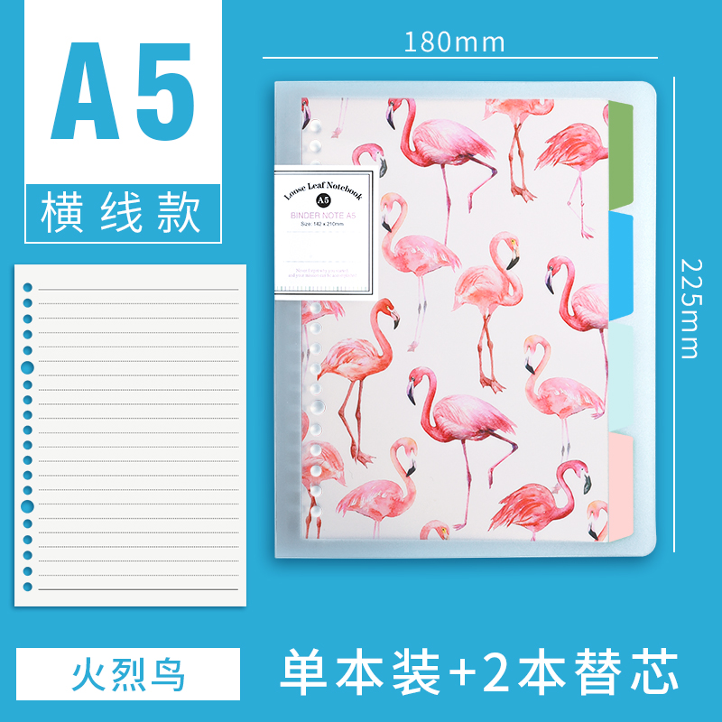 A5 HORIZONTAL LINE [FLAMINGO] SEND 2 REFILLS