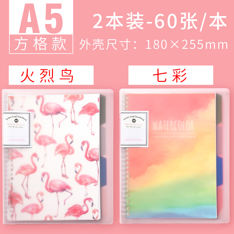 A5  SQUARES [1 FLAMINGO +1 THIS COLORFUL]