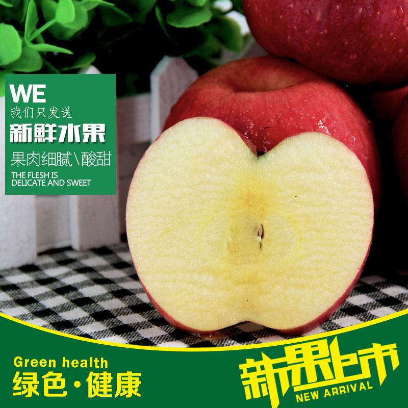 苏子富春 冰糖心红富士苹果5斤装