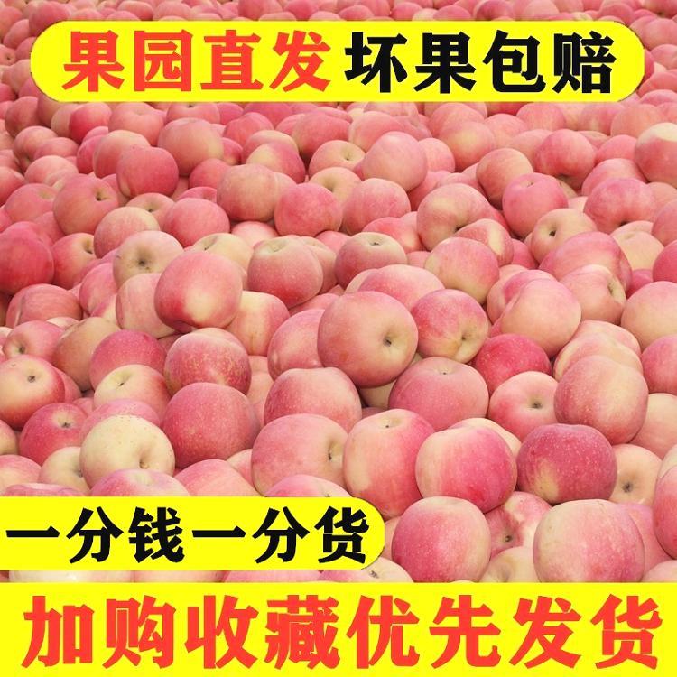 糖心苹果糖心小苹果带箱十斤食品95苹果苹果阿克苏红富士果农甜心