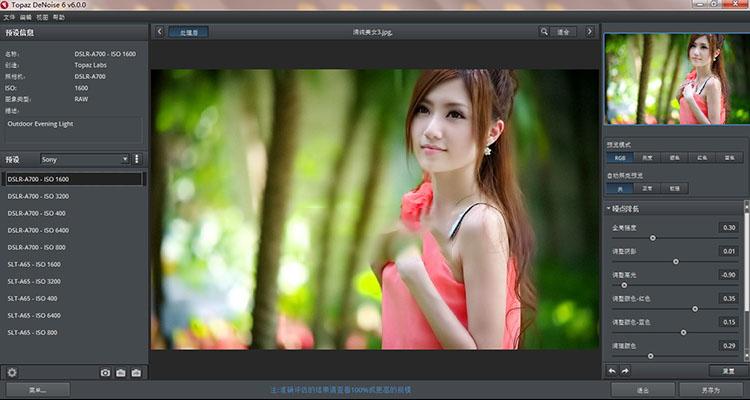 【S510】PS磨皮降噪滤镜 Topaz DeNoise 6.0 中文汉化版WIN支持PS2020