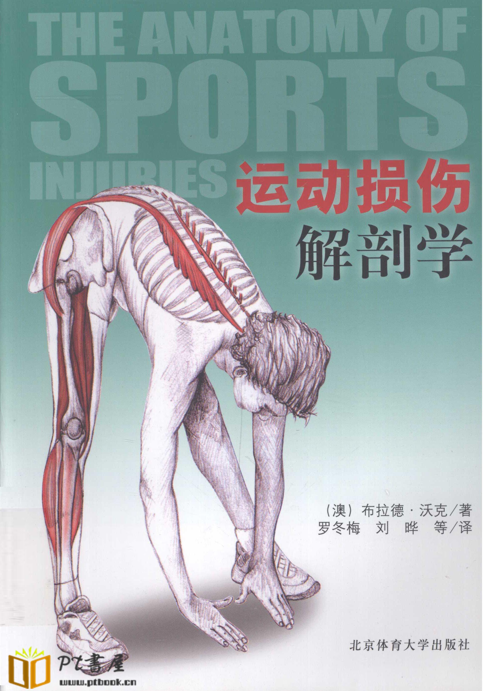 运动损伤解剖学 Book Cover